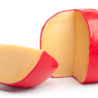 edam cheese photo